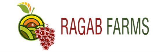Ragab Farms